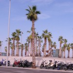 https://www.prachtigbarcelona.nl/wp-content/uploads/2013/10/Strand-Barcelona-29651.jpg